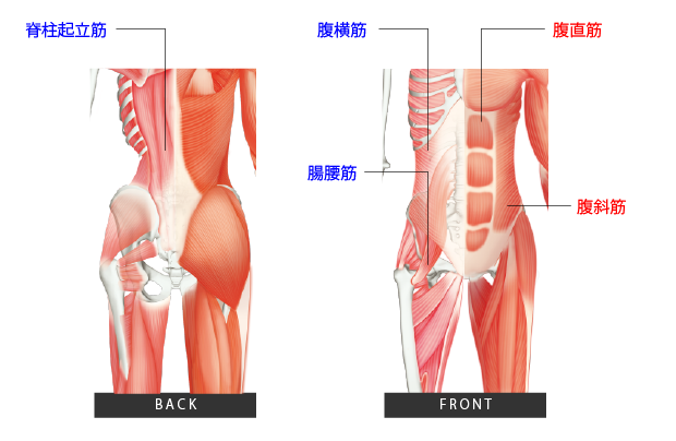 ©株式会社BACKBONEWORKS 『長友佑都 体幹トレーニング20』(KKベストセラーズ)より