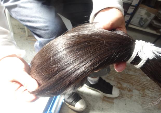 ドナーから提供された髪の毛を、丁寧に色と長さを合わせて一つの束にまとめられる